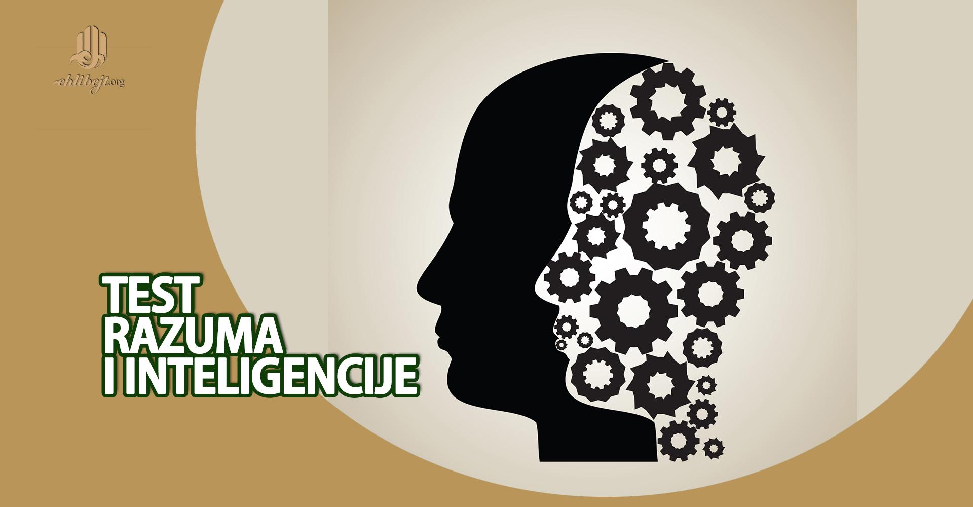 Test razuma i inteligencije