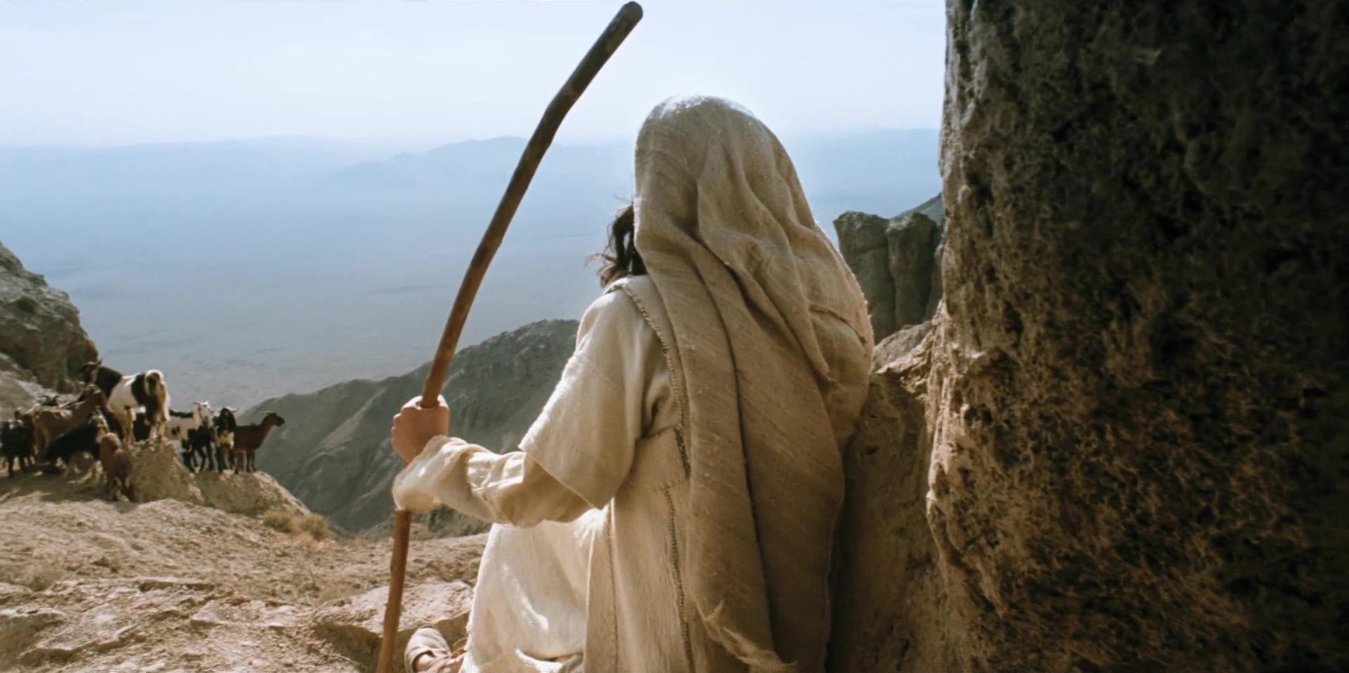 Poslanik, s.a.v.a., i čuvanje ovaca