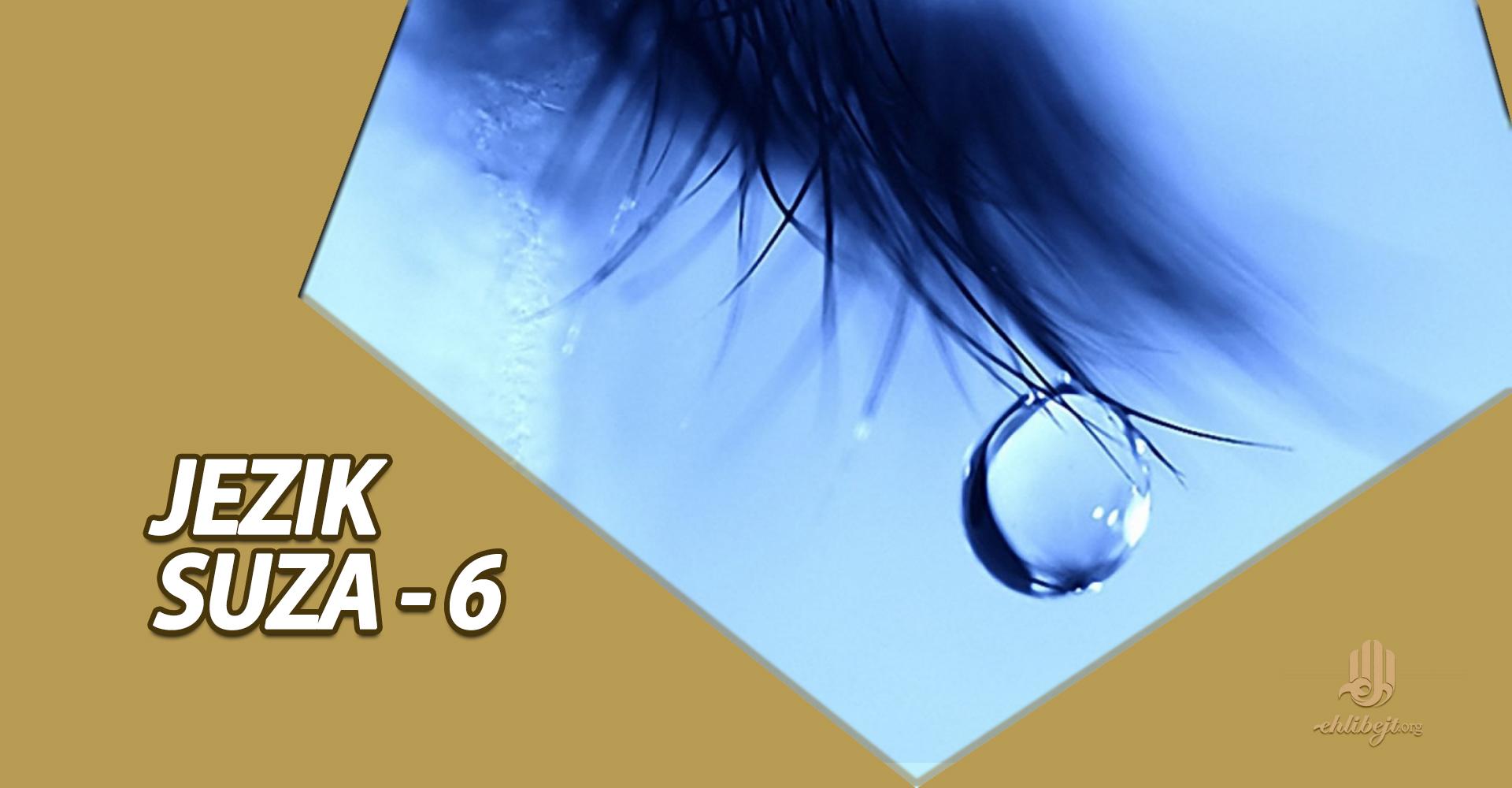 Logika suza (šesti dio)
